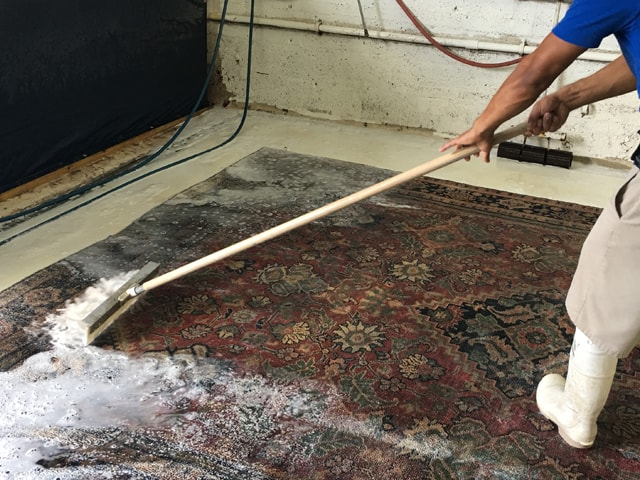 Top Rug Cleaning Company - Rug Cleans